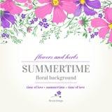 Διανυσματικά γαμήλια πρόσκληση και υπόβαθρο με τα λουλούδια Στοκ εικόνα με δικαίωμα ελεύθερης χρήσης