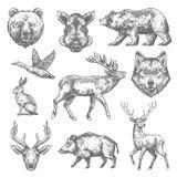 Διανυσματικά εικονίδια άγριων ζώων σκίτσων για το κυνήγι ή το ζωολογικό κήπο διανυσματική απεικόνιση