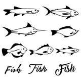 Διανυσματικά εικονίδια απεικόνισης ψαριών καθορισμένα Στοκ εικόνα με δικαίωμα ελεύθερης χρήσης