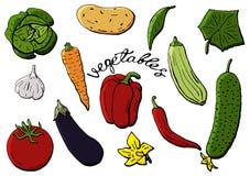 Διανυσματικά εικονίδια λαχανικών που τίθενται στο ύφος κινούμενων σχεδίων Αγροτικό προϊόν συλλογής για τις επιλογές εστιατορίων,  Στοκ εικόνα με δικαίωμα ελεύθερης χρήσης
