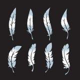 Διανυσματικά εικονίδια φτερών καθορισμένα διανυσματική απεικόνιση