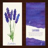 Διανυσματικά εμβλήματα με lavender watercolor Στοκ Φωτογραφίες