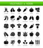 Διανυσματικά επίπεδα εικονίδια με τα λαχανικά και τα χορτάρια Υγιής τρόπος ζωής διανυσματική απεικόνιση