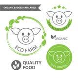 Διανυσματικά καθορισμένα εμβλήματα του αγροκτήματος eco και των φυσικών τροφίμων Οργανικές διακριτικά και ετικέτες Στοκ Εικόνες