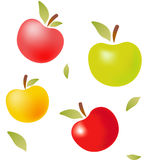 Διανυσματικά μήλα χρώματος με τα φύλλα Στοκ Εικόνες
