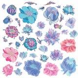 Διανυσματικά λουλούδια σκίτσων Στοκ εικόνα με δικαίωμα ελεύθερης χρήσης