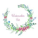 Διανυσματικά λουλούδια watercolor καθορισμένα Στοκ Φωτογραφία