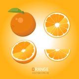 Διανυσματικά πορτοκαλιά φρούτα Στοκ Φωτογραφία