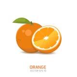 Διανυσματικά πορτοκαλιά φρούτα Στοκ Φωτογραφίες