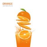 Διανυσματικά πορτοκαλιά φρούτα Στοκ φωτογραφία με δικαίωμα ελεύθερης χρήσης
