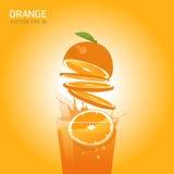 Διανυσματικά πορτοκαλιά φρούτα Στοκ Εικόνες