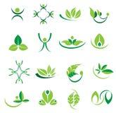 Διανυσματικά πράσινα εικονίδια φύλλων logotype, οικολογία, σχέδια welness στοκ εικόνα