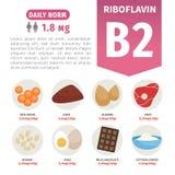 Διανυσματικά προϊόντα αφισών με τη βιταμίνη B2 διανυσματική απεικόνιση