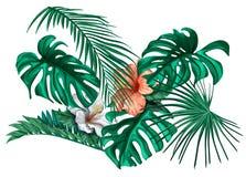 Διανυσματικά τροπικά φύλλα και hibiscus λουλούδια καθορισμένα Στοκ Εικόνες