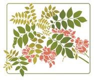 Διανυσματικά φύλλα με τα λουλούδια Στοκ Εικόνα