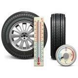 Διανυσματικά χειμερινά ρόδα και θερμόμετρο Στοκ Εικόνα