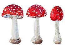 Διανυσματικά amanita Watercolor μανιτάρια Στοκ Φωτογραφίες