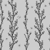 Διανυσματικά floral χορτάρια μορίων απεικόνισης απεικόνιση αποθεμάτων