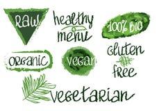 Διανυσματικά vegan συρμένα χέρι εικονίδια λέξης καθορισμένα στοκ φωτογραφία με δικαίωμα ελεύθερης χρήσης