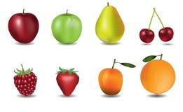 Διανυσματικές απεικονίσεις φρούτων Στοκ Εικόνα