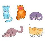 Διανυσματικές γάτες Στοκ Φωτογραφίες