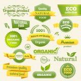 Διανυσματικές γραμματόσημα Eco, εμβλήματα και ετικέτες Στοκ φωτογραφία με δικαίωμα ελεύθερης χρήσης