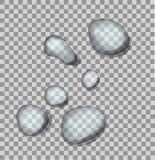 Διανυσματικές μπλε πτώσεις του νερού στο διαφανές υπόβαθρο Φρέσκια απεικόνιση ψεκασμού ελεύθερη απεικόνιση δικαιώματος