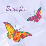 Διανυσματικές πεταλούδες Στοκ Εικόνες