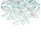 Διανυσματική ανθοδέσμη με την περίληψη Tradescantia ή τις εγκαταστάσεις ίντσας ή το λουλούδι περιπλάνησης Εβραίος Λουλούδι και φύ διανυσματική απεικόνιση