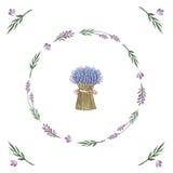 Διανυσματική ανθοδέσμη watercolor lavender Στοκ φωτογραφία με δικαίωμα ελεύθερης χρήσης