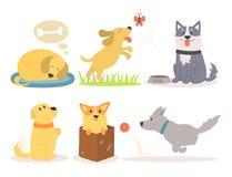 Διανυσματική απεικόνισης χαριτωμένη παίζοντας σκυλιών χαρακτήρων αστεία καθαρής φυλής φυλή θηλαστικών κουταβιών κωμική ευτυχής Στοκ φωτογραφία με δικαίωμα ελεύθερης χρήσης