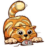 Διανυσματική απεικόνιση γατακιών πιπεροριζών Στοκ φωτογραφία με δικαίωμα ελεύθερης χρήσης