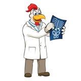 Διανυσματική απεικόνιση γιατρών Rooser Στοκ φωτογραφία με δικαίωμα ελεύθερης χρήσης