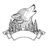 Διανυσματική απεικόνιση ενός ουρλιάζοντας λύκου με την κορδέλλα Στοκ Φωτογραφίες