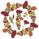 Διανυσματική απεικόνιση ενός floral πλαισίου με μορφή ενός κύκλου στοκ εικόνες με δικαίωμα ελεύθερης χρήσης