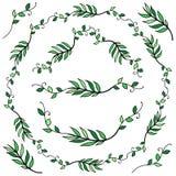 Διανυσματική απεικόνιση ενός floral πλαισίου με μορφή ενός κύκλου στοκ φωτογραφίες με δικαίωμα ελεύθερης χρήσης