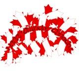Διανυσματική απεικόνιση ημέρας του Καναδά Ευτυχές σχέδιο πρόσκλησης διακοπών ημέρας του Καναδά Κόκκινο φύλλο που απομονώνεται σε  Στοκ φωτογραφίες με δικαίωμα ελεύθερης χρήσης