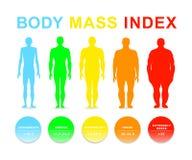 Διανυσματική απεικόνιση μαζικών δεικτών σώματος Σκιαγραφίες με τους διαφορετικούς βαθμούς παχυσαρκίας στοκ εικόνες