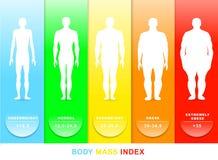 Διανυσματική απεικόνιση μαζικών δεικτών σώματος Σκιαγραφίες με τους διαφορετικούς βαθμούς παχυσαρκίας στοκ εικόνα με δικαίωμα ελεύθερης χρήσης