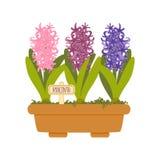 Διανυσματική απεικόνιση με το δοχείο λουλουδιών Στοκ εικόνα με δικαίωμα ελεύθερης χρήσης