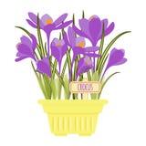 Διανυσματική απεικόνιση με το δοχείο λουλουδιών Στοκ Φωτογραφία