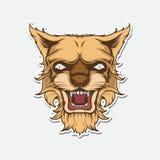 Διανυσματική απεικόνιση προσώπου λιονταριών Στοκ Εικόνα