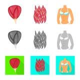 Διανυσματική απεικόνιση της ίνας και του μυϊκού εικονιδίου Συλλογή του διανυσματικού εικονιδίου ινών και σωμάτων για το απόθεμα διανυσματική απεικόνιση