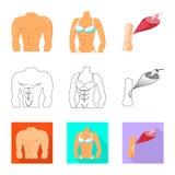 Διανυσματική απεικόνιση της ίνας και του μυϊκού συμβόλου Συλλογή του συμβόλου αποθεμάτων ινών και σωμάτων για τον Ιστό ελεύθερη απεικόνιση δικαιώματος