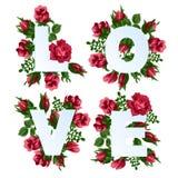 Διανυσματική απεικόνιση της αγάπης λέξης που διακοσμείται με τα κόκκινα ροδαλά λουλούδια Στοκ εικόνα με δικαίωμα ελεύθερης χρήσης