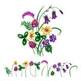 Διανυσματική απεικόνιση της ανθοδέσμης που γίνεται από τα wildflowers Στοκ Εικόνες