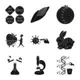 Διανυσματική απεικόνιση της ποιότητας και του εργαστηριακού εικονιδίου Συλλογή της ποιότητας και γενετικά του διανυσματικού εικον απεικόνιση αποθεμάτων