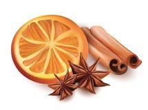Διανυσματική απεικόνιση της πορτοκαλιάς φέτας, των ραβδιών κανέλας και του αστεριού Anice στο άσπρο υπόβαθρο Στοκ φωτογραφία με δικαίωμα ελεύθερης χρήσης