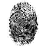 Διανυσματική απεικόνιση του δακτυλικού αποτυπώματος Στοκ Φωτογραφία