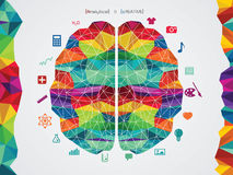 Διανυσματική απεικόνιση του εγκεφάλου διανυσματική απεικόνιση